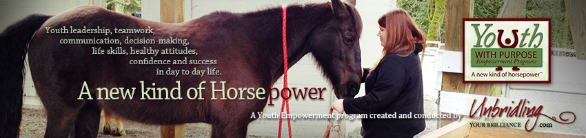 HorsePower Program for youth
